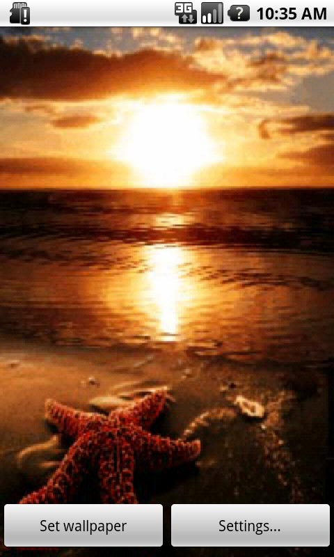 Summer Beach Sunset Wallpaper 480x800