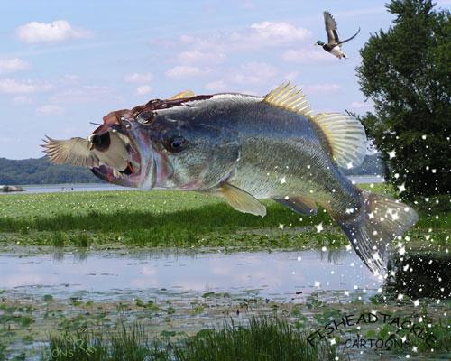 Bass fishing art wallpapers 500x400