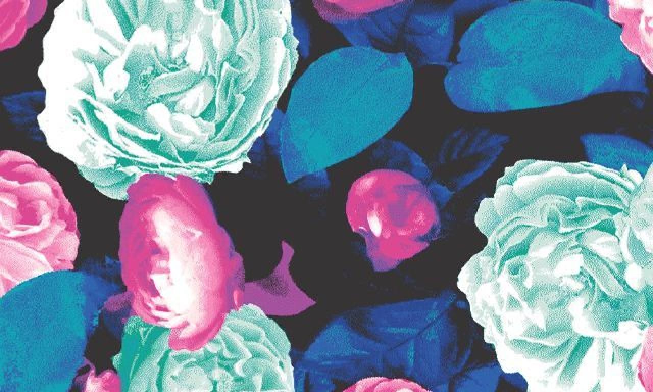 victorias secret pink wallpapers for desktop Dance Floor Pickup 1280x768