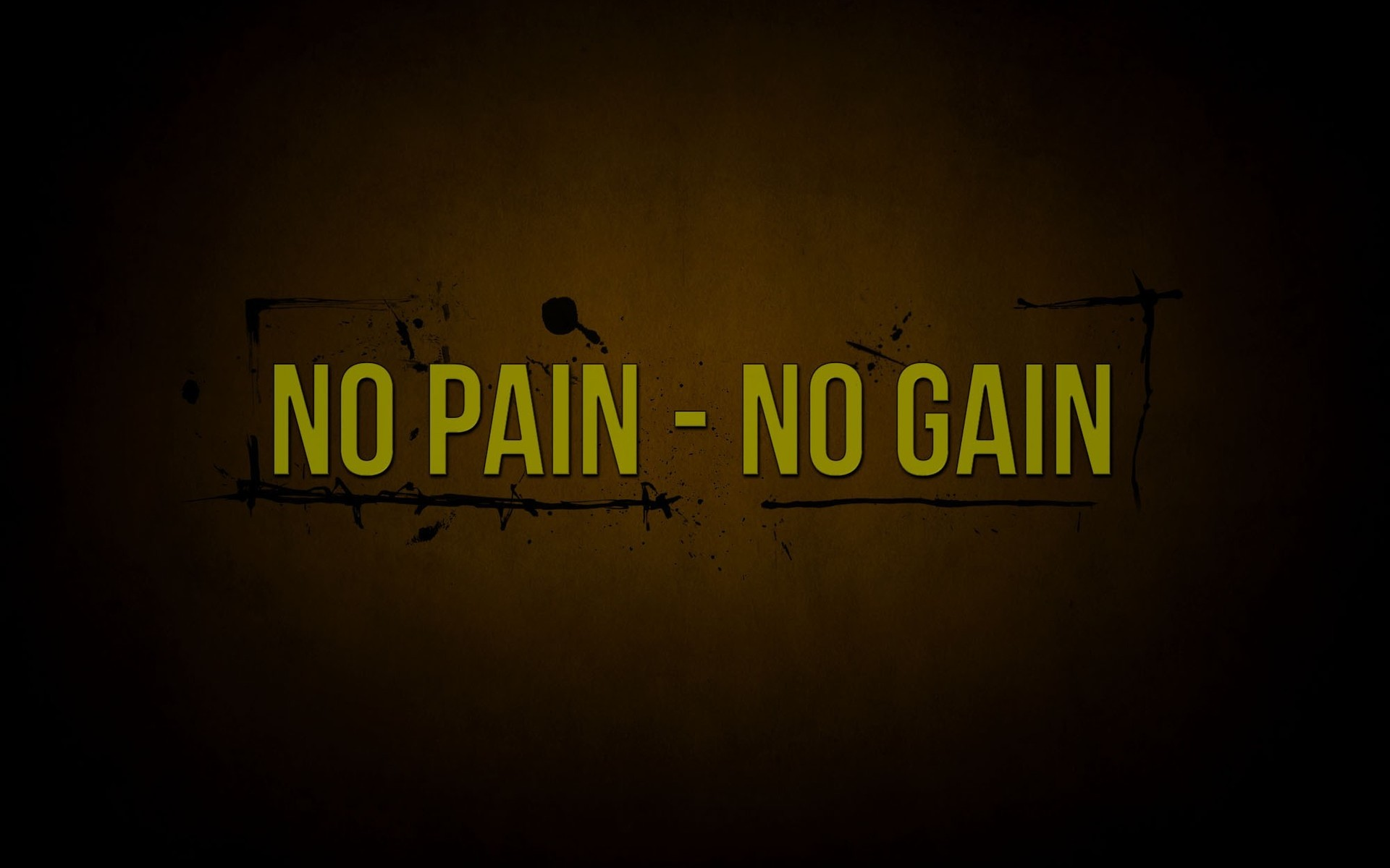No Pain No Gain Quotes Exclusive HD Wallpapers 6784 1920x1200