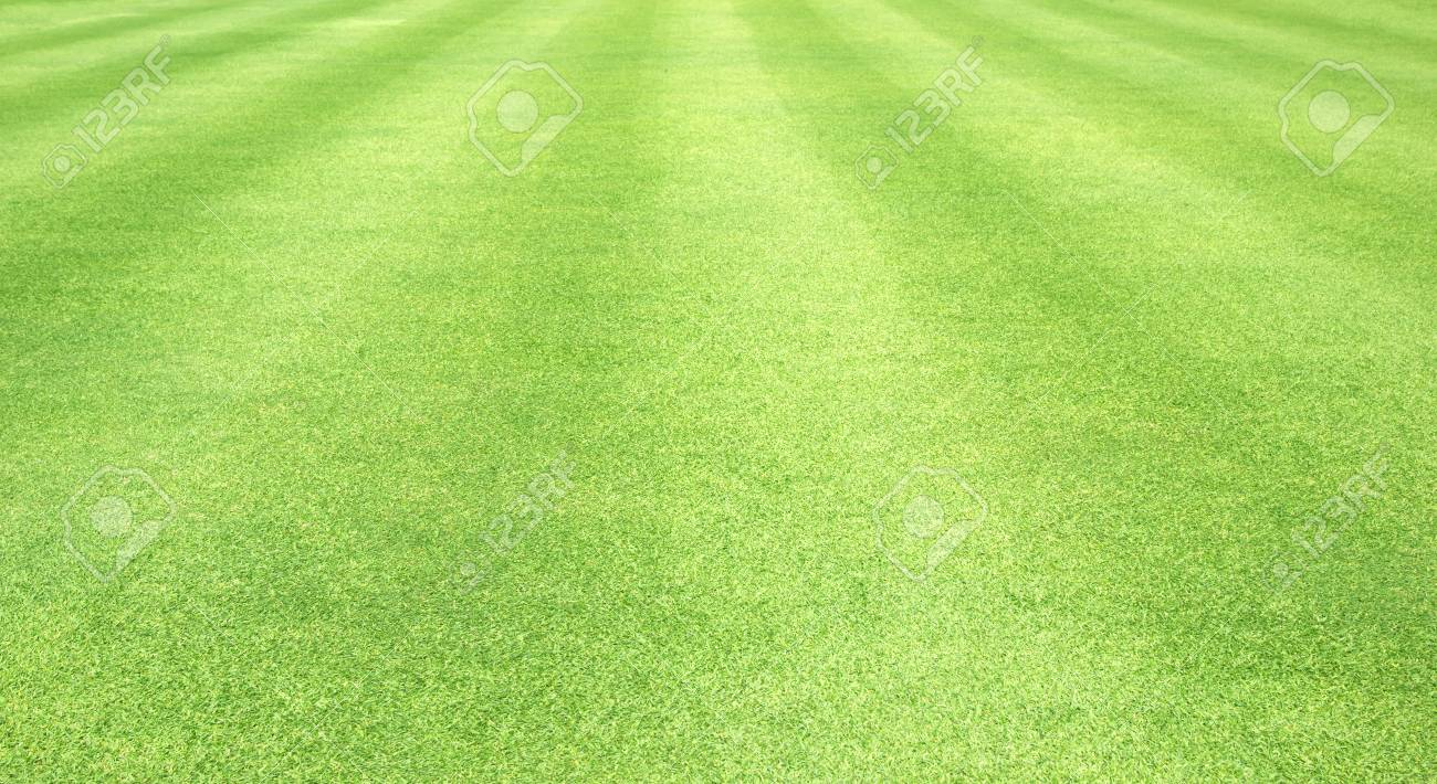 Grass Background Golf Courses Green Lawn Pattern Textured 1300x710