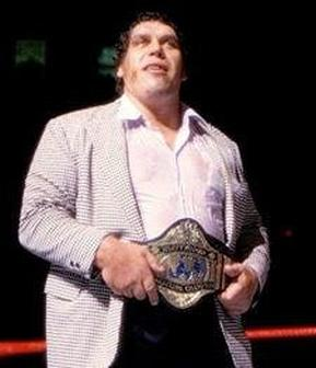 Andre The Giant   WWE Superstars WWE Wallpapers WWE PPVs 289x336