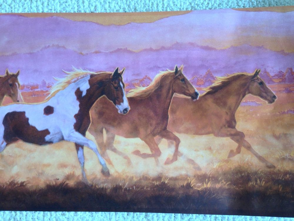 Old West Running Horses Wallpaper Border Pink Sky eBay 1000x750
