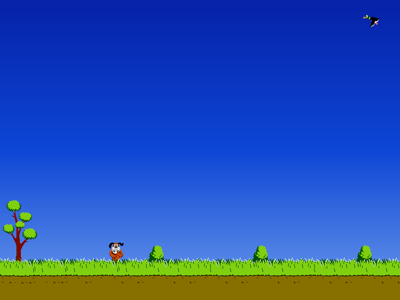 Duck Hunting Backgrounds 1600x1200