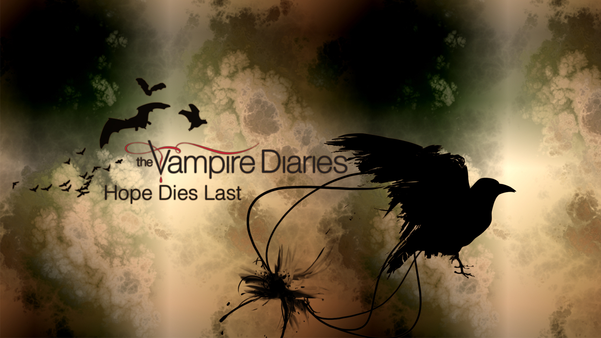 Wallpaper The Vampire Diaries: The Vampire Diaries HD Wallpapers