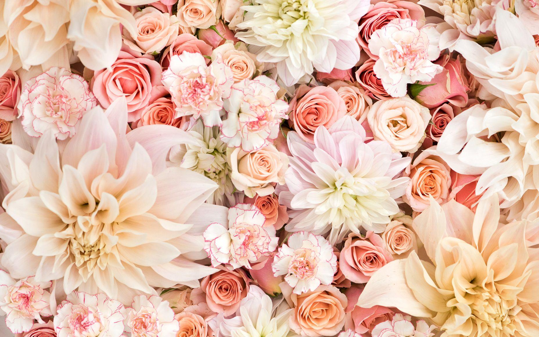 Floral Desktop Wallpapers   Top Floral Desktop Backgrounds 1856x1161