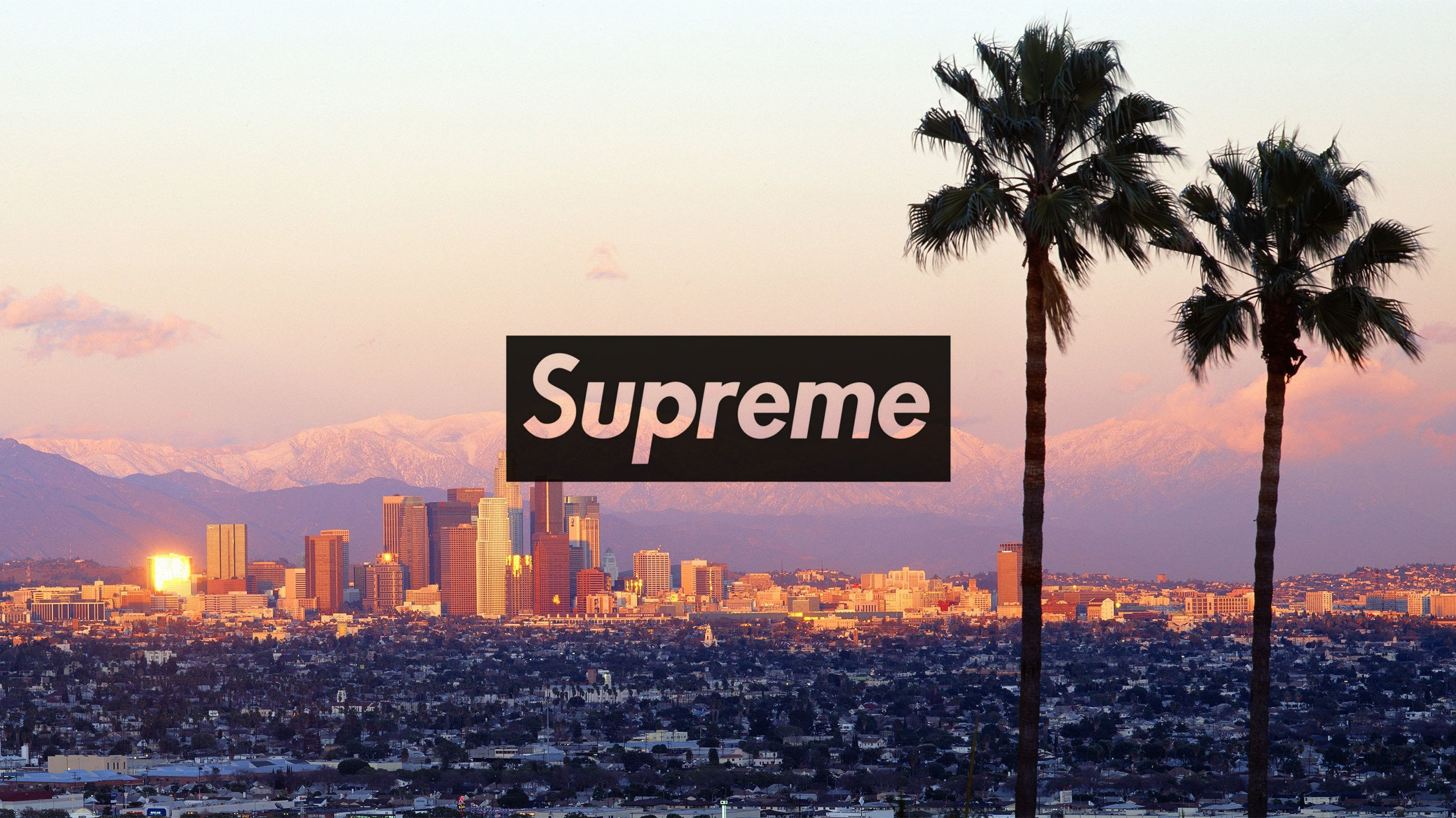 2560x1440 Download the Los Angeles Supreme wallpaper below for 2560x1440