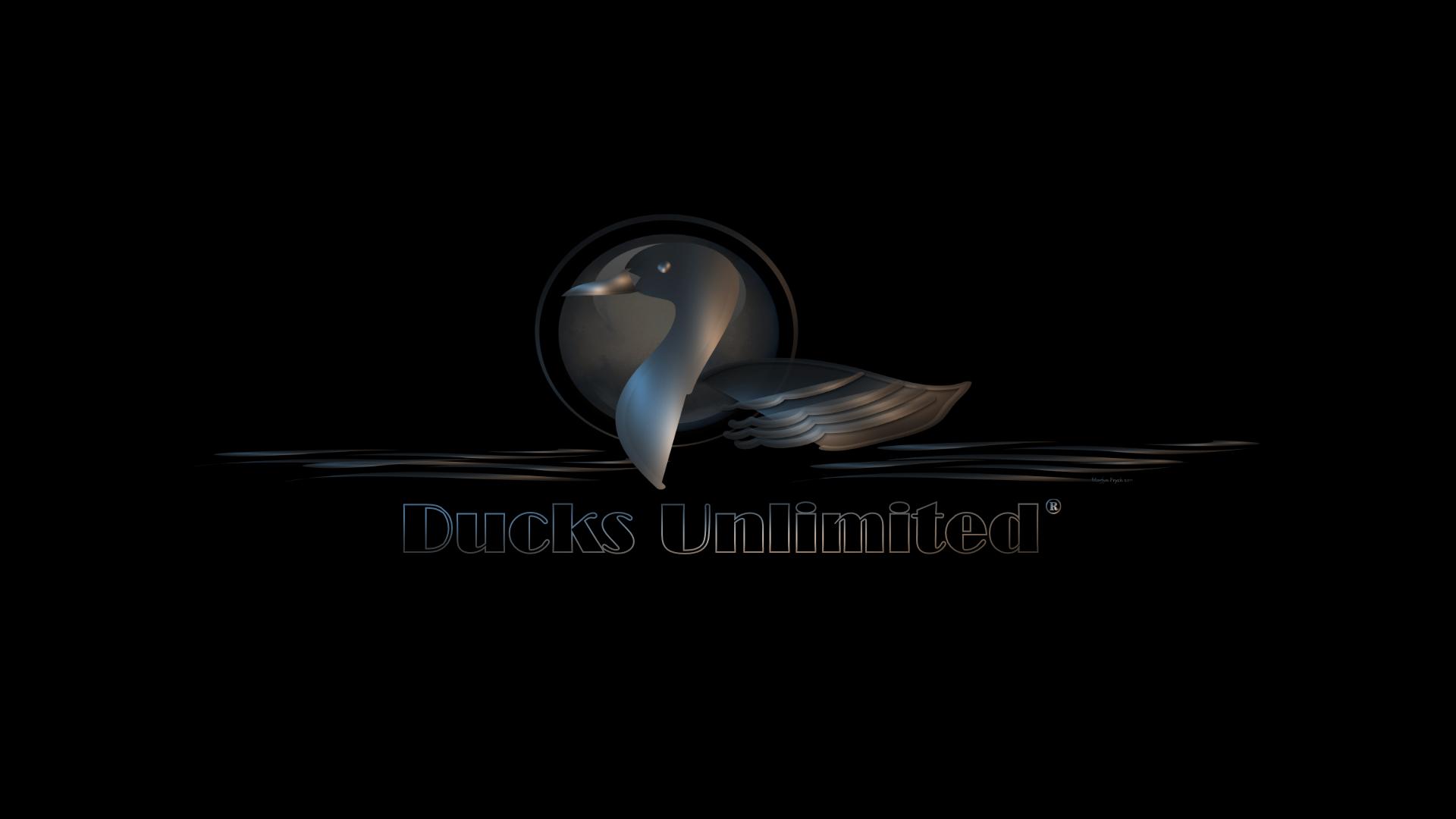 Ducks Unlimited Wallpaper   FREE DOWNLOAD HD WALLPAPERS 1920x1080