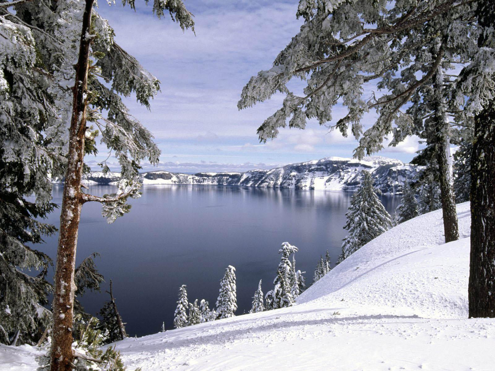 Winter Desktop Wallpapers and Backgroundswallpapers 1600x1200