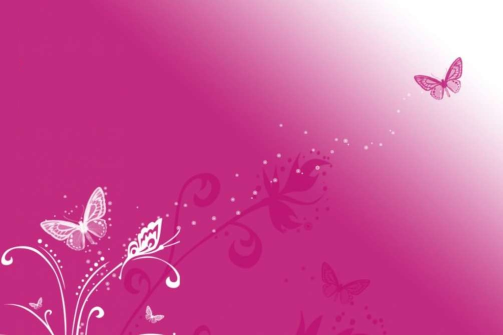 Pink Butterfly Vector Background HD Wallpaper Vector 1600x1068