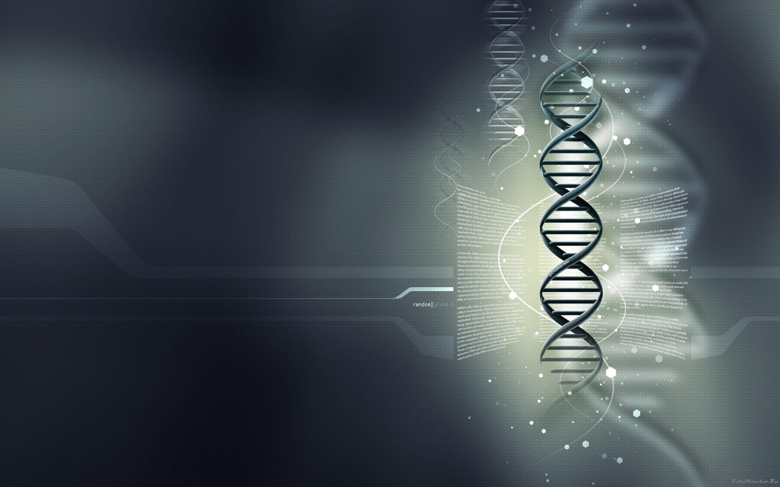 Download wallpaper gray background DNA medical wallpaper genes 2560x1600