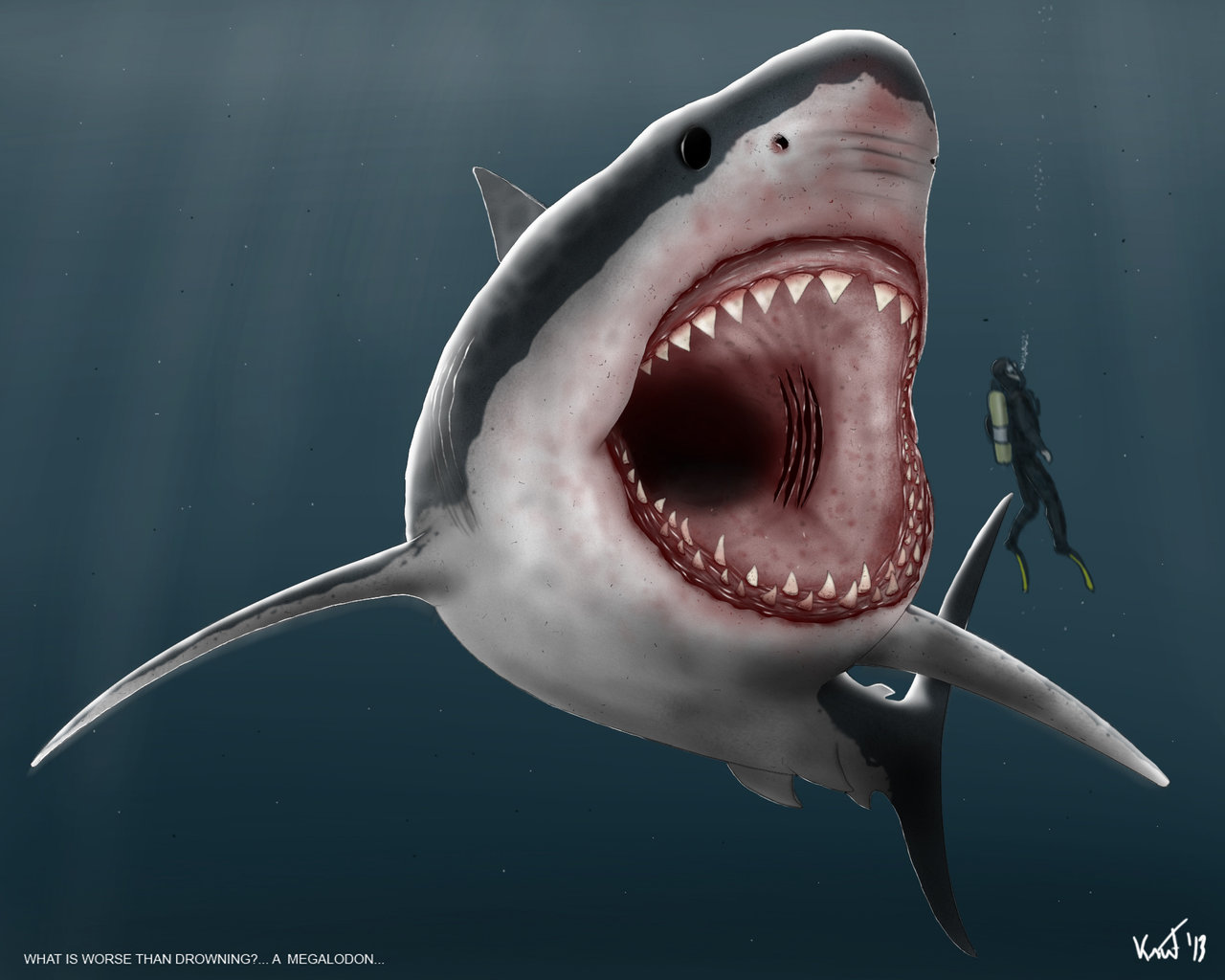 megalodon shark pictures - HD 1280×1024