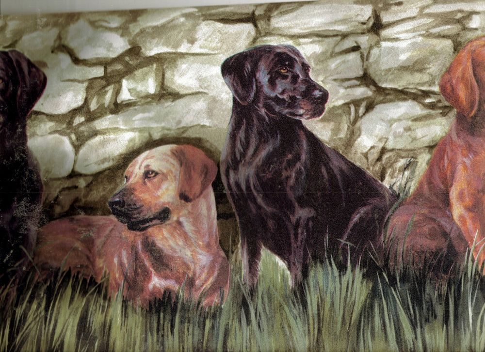 Labrador Hunting Dogs in The Field Waiting Wallpaper Border TM75052B 1000x727