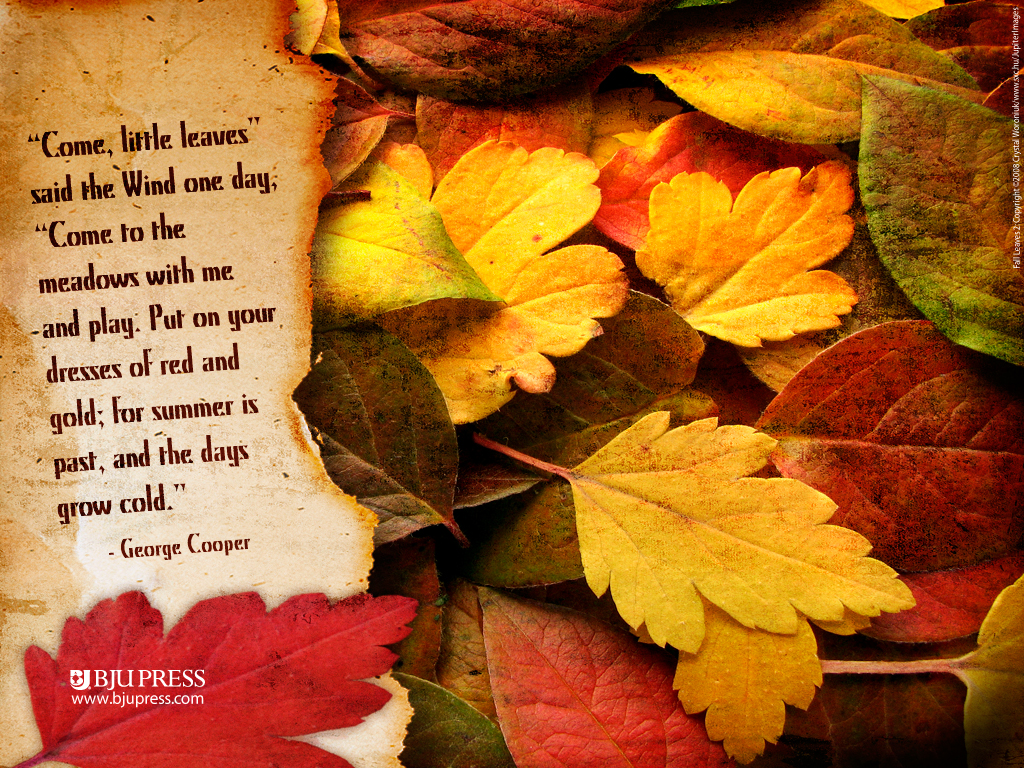 to a beautiful Saturday and your First Day of Autumn 2012 Enjoy 1024x768