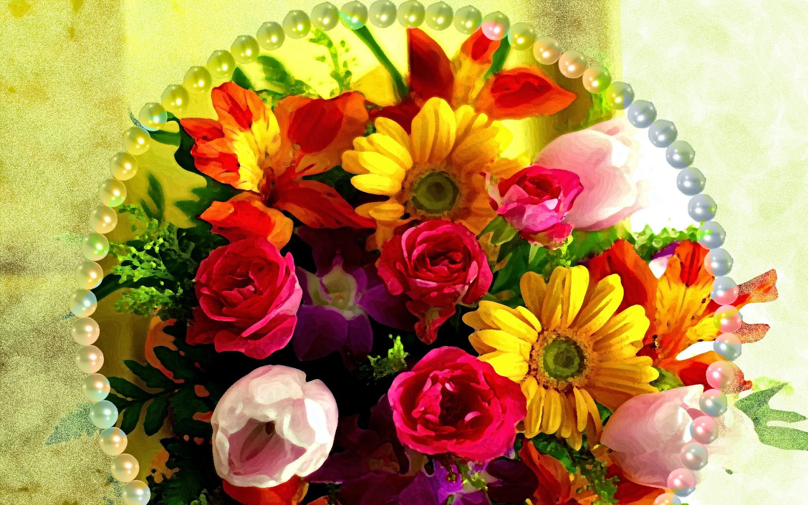 Best Beautiful Flowers In The World My Web Value