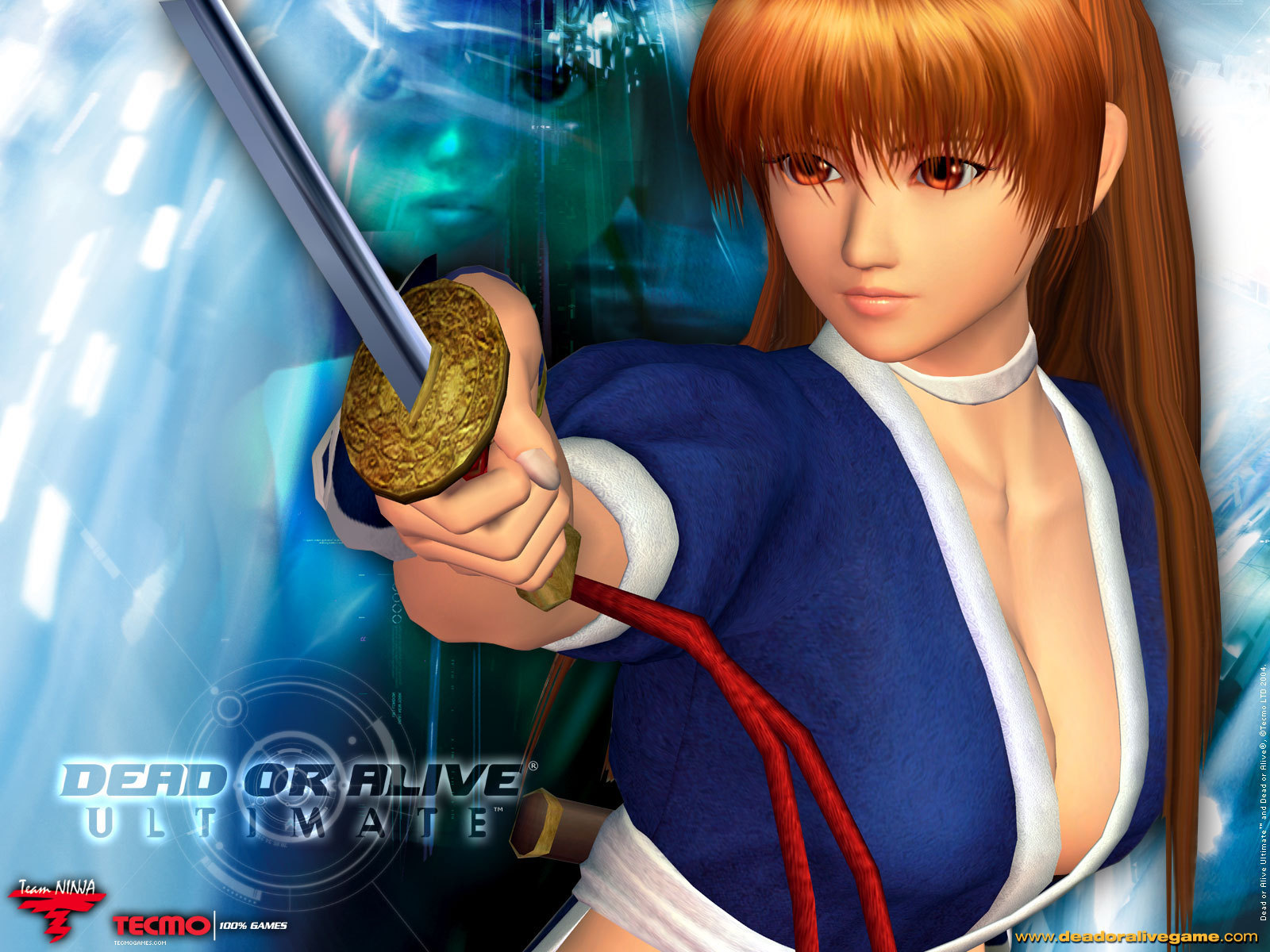 Dead or Alive Ultimate   Dead or Alive Wallpaper 10484469 1600x1200