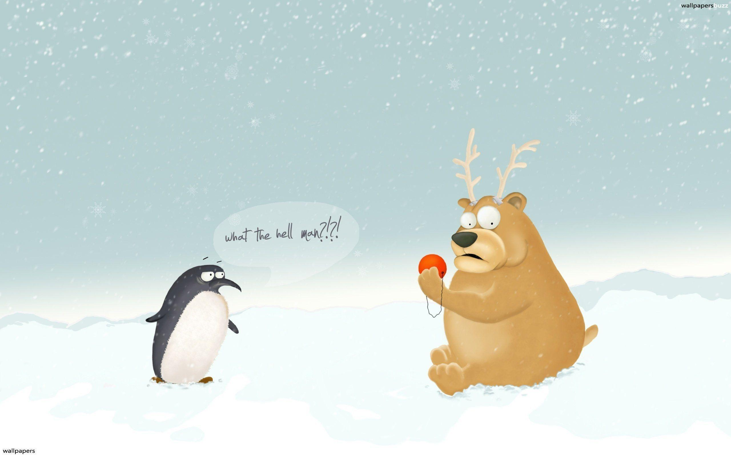 Funny Christmas Wallpaper   Picseriocom 2560x1600