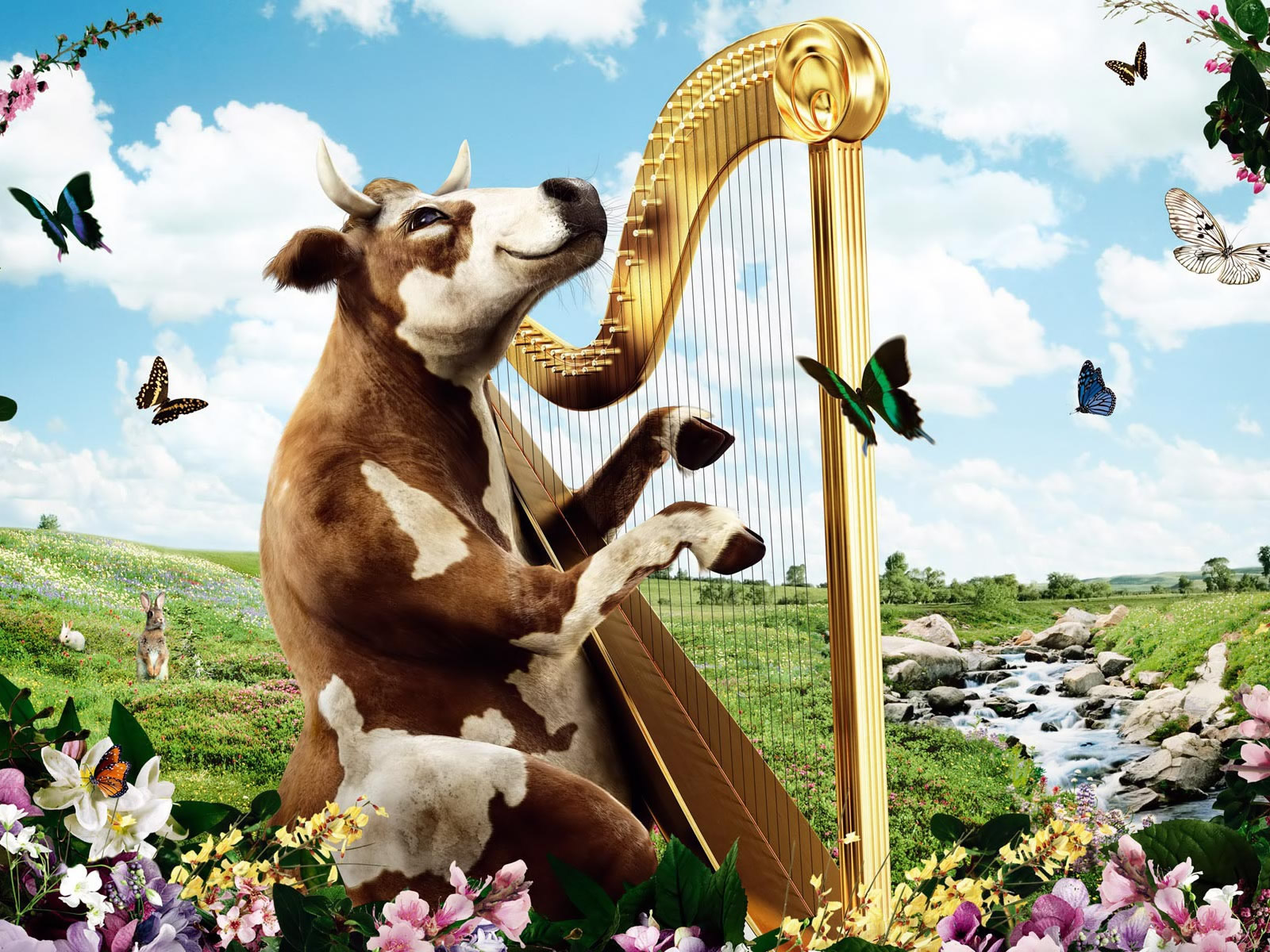 74+] Funny Cow Wallpaper on WallpaperSafari