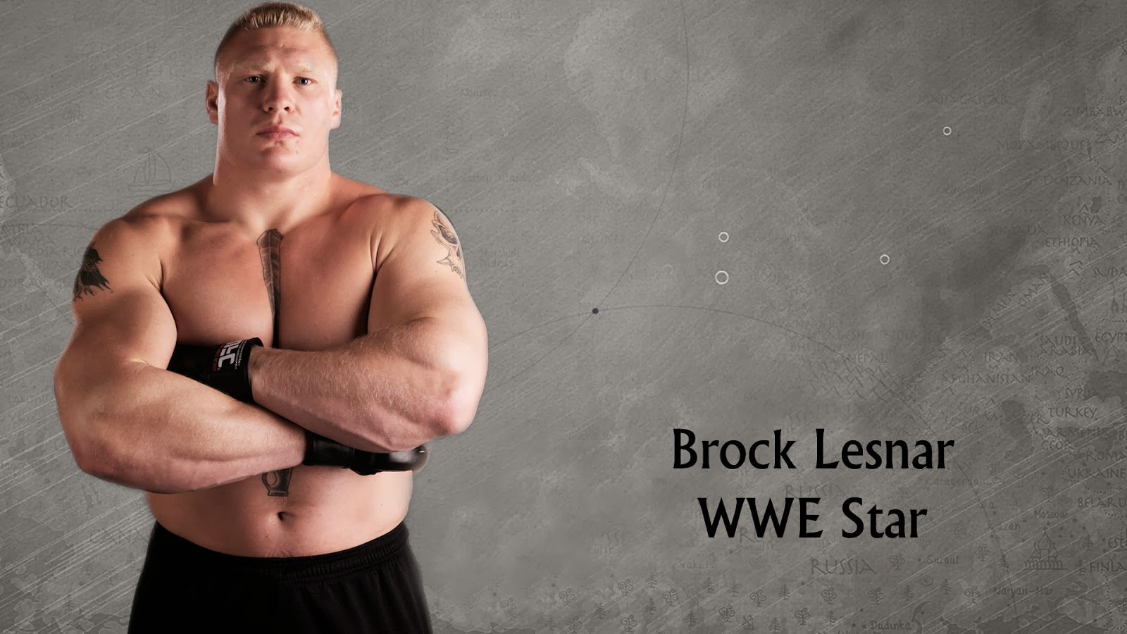 Brock Lesnar HD Wallpapers for Desktop WWE TNA ROH UFC 1600x900