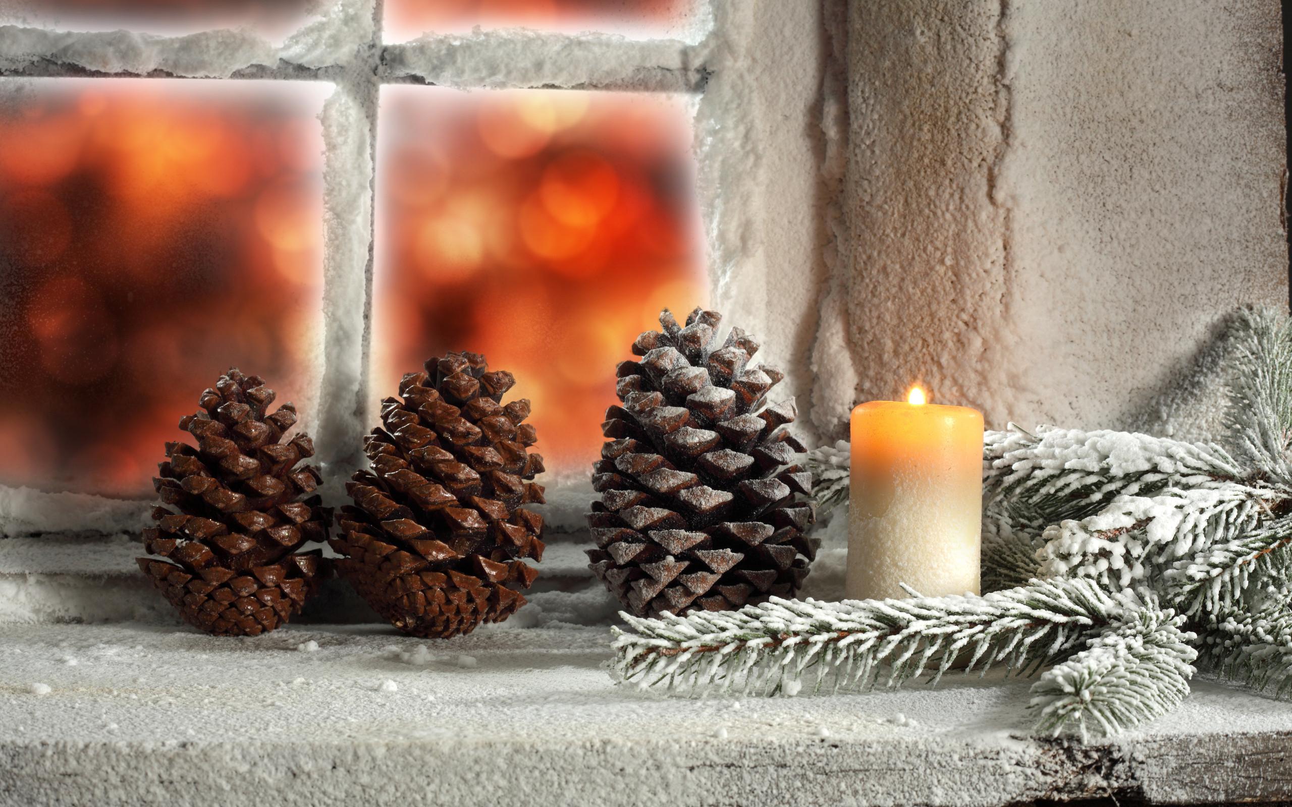 Christmas Winter Scene Wallpaper Desktop The Best HD Wallpaper 2560x1600