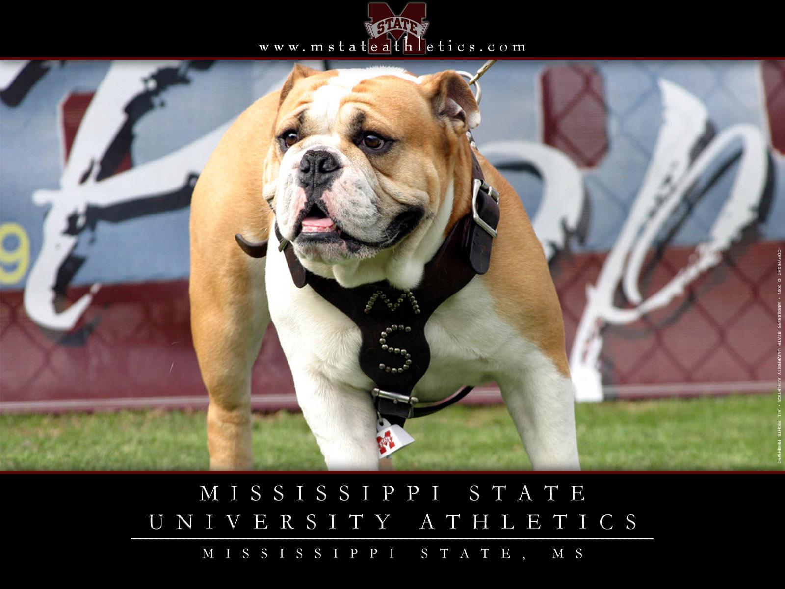 Mississippi State University Logo Wallpaper Mississippi state athletic 1600x1200