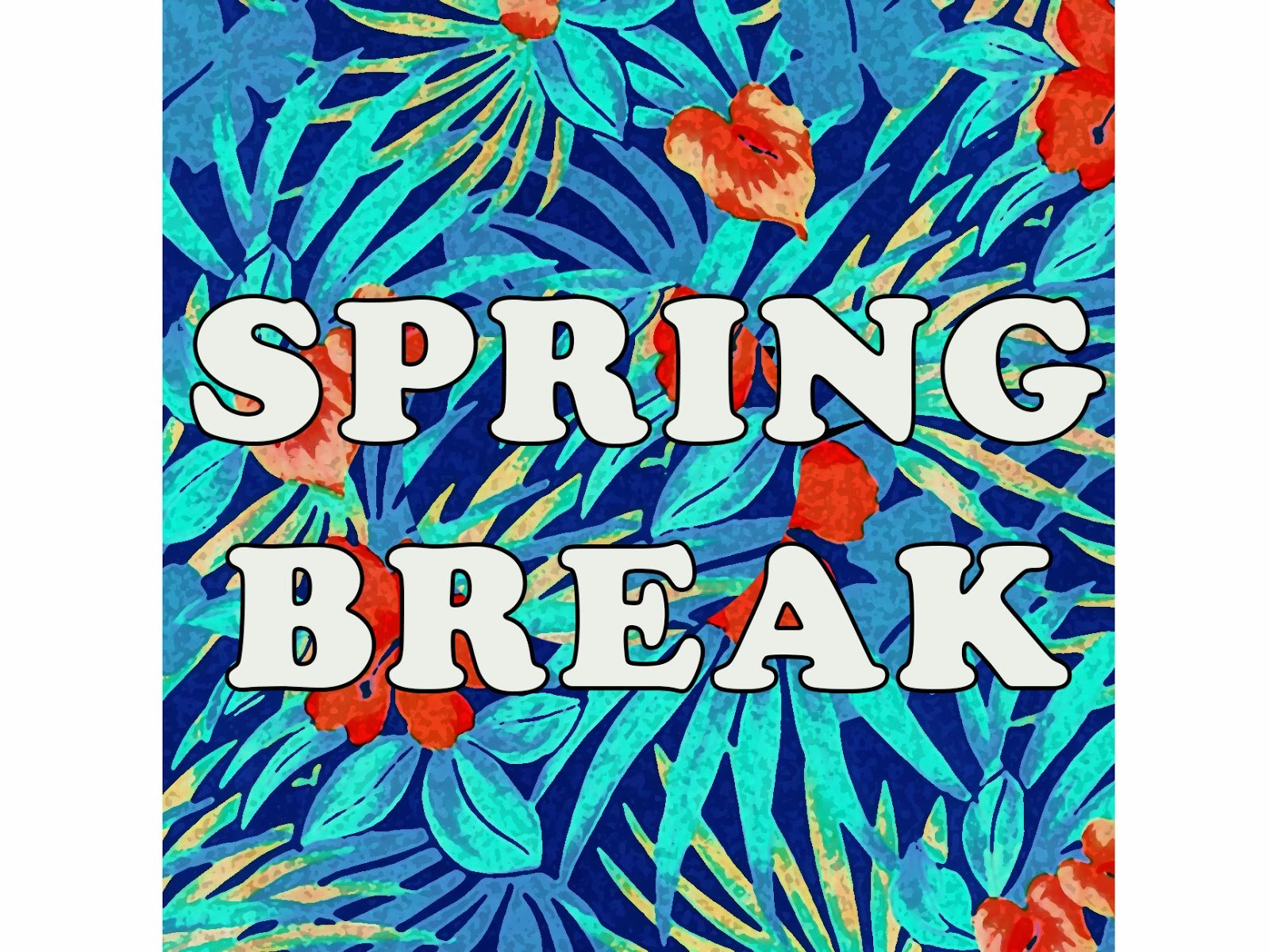 Spring Break 2014 Wallpaper Budget spring break 1600x1200