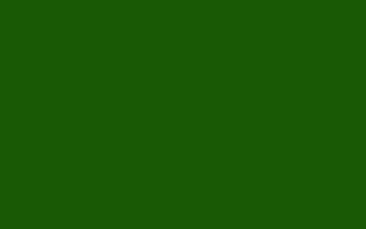 Green Color Background Wallpaper - WallpaperSafari