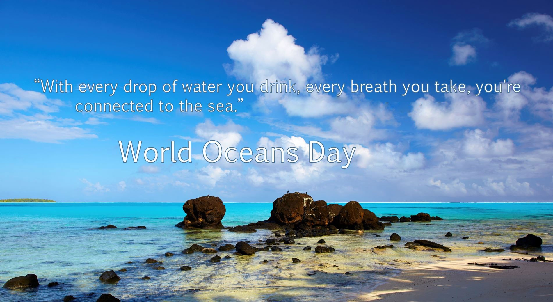 World Oceans Day Mobile 1901x1038