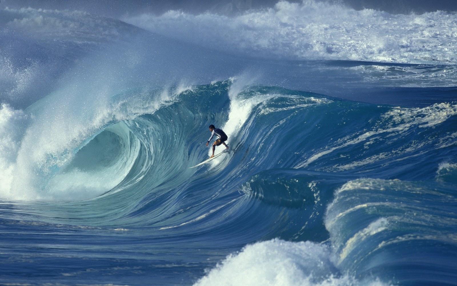 69 Surfer Wallpaper On Wallpapersafari