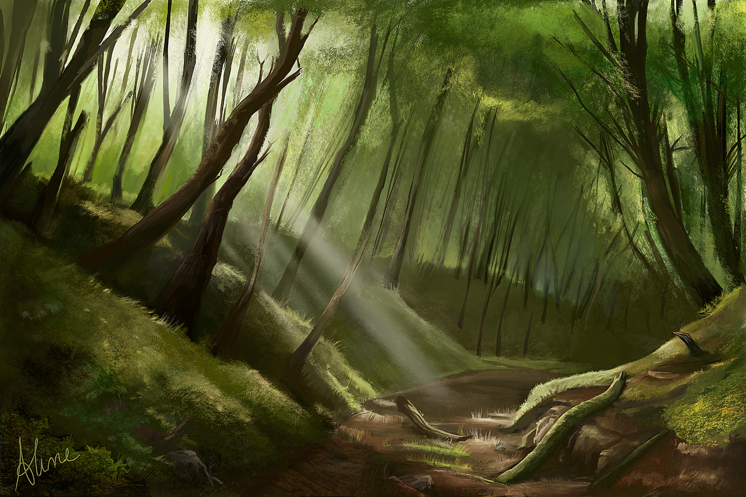 Free Download Enchanted Forest Picture Wallpaper Cool 1500x1001
