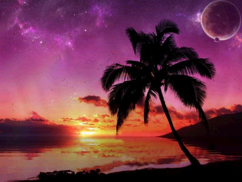sunset wallpaper desktop Beach wallpaper desktopDesktop Backgrounds 800x600