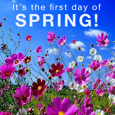 Its The First Day Of Spring Pictures Photos and Images 400x400