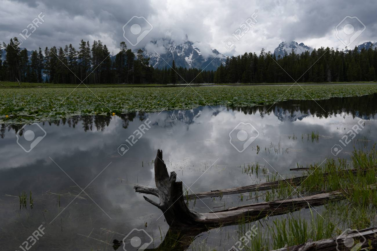 Dark Clouds Brood Over Waters Of Heron Pond With Tetons In 1300x867