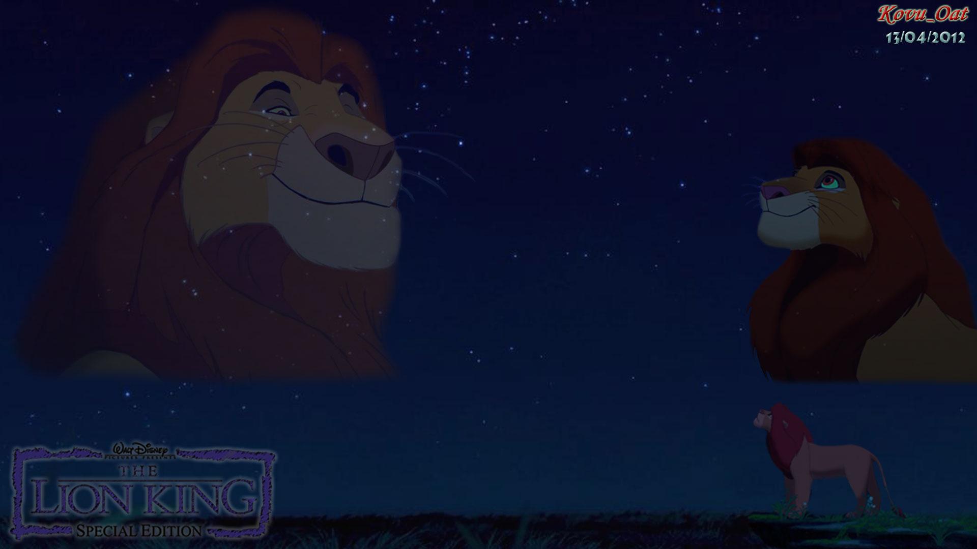 Simba love night sky Wallpaper HD HD wallpaper and background photos 1920x1080