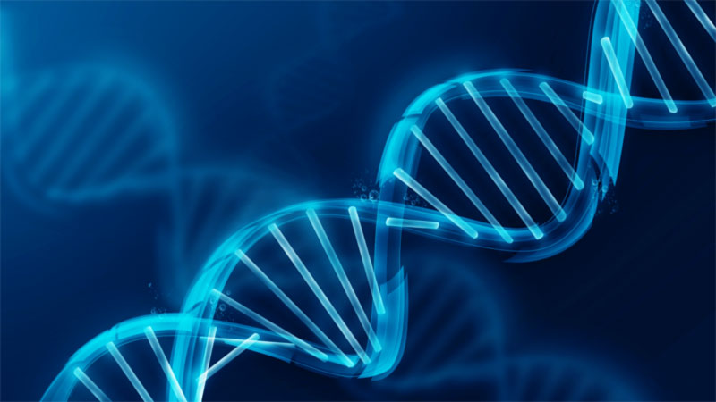related pictures dna wallpaper for desktop Car Pictures 800x450