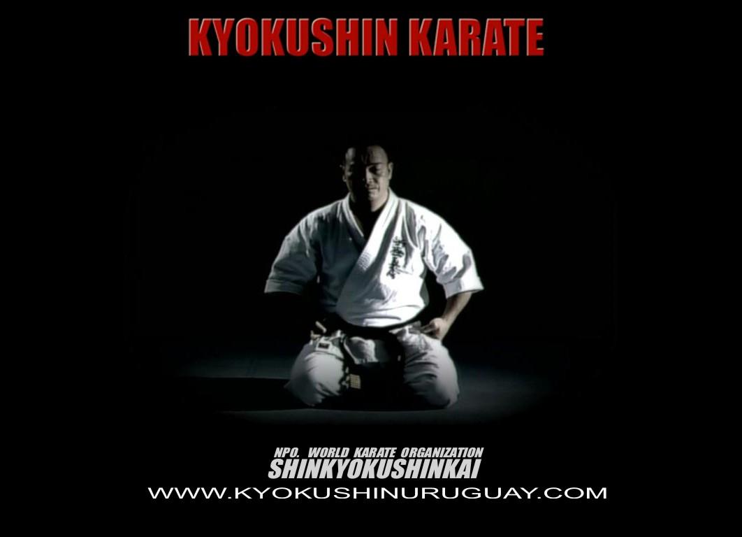 kyokushin karate wallpaper wwwpixsharkcom images