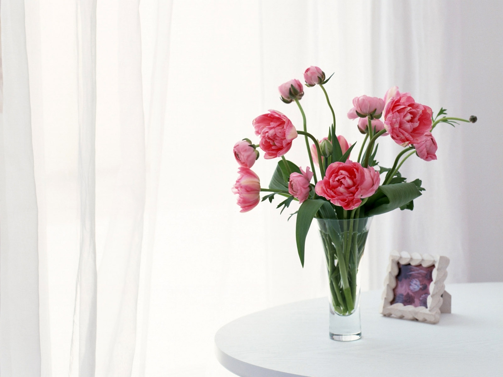 red vase flowers wallpaper beautiful violet vase flower wallpaper 1600x1200