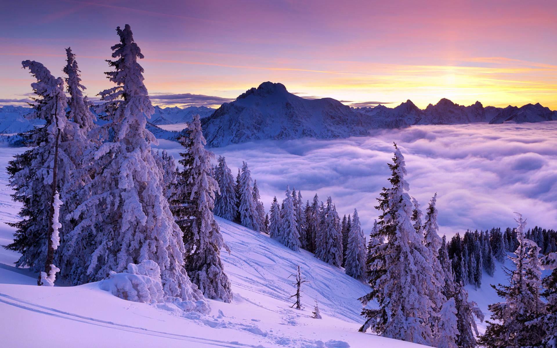 Purple Winter Sunset Wallpapers HD Wallpapers 1920x1200