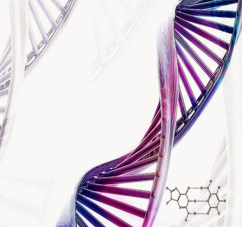 3D Image DNA HD Wallpaper Download 819x769