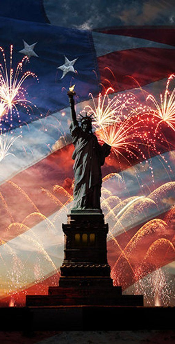 Statue of Liberty with Fireworks American Flag in background 2x4 570x1118
