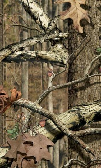 Mossy Oak Breakup Camo Wallpaper Mossy Oak Break...