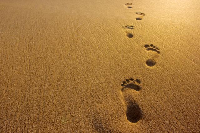 you is footprints on your back from everybody walking all over you 640x425