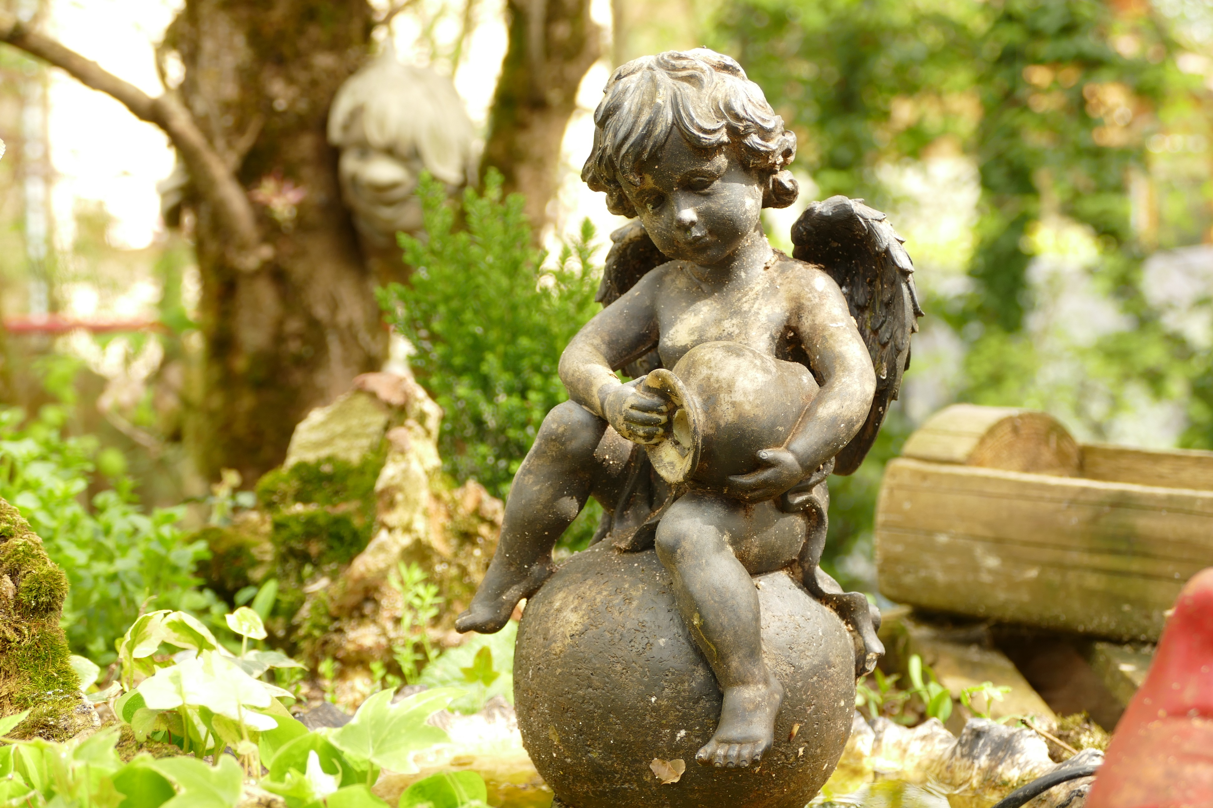 A cherub statue in a garden 4k Ultra HD Wallpaper Background 3888x2592