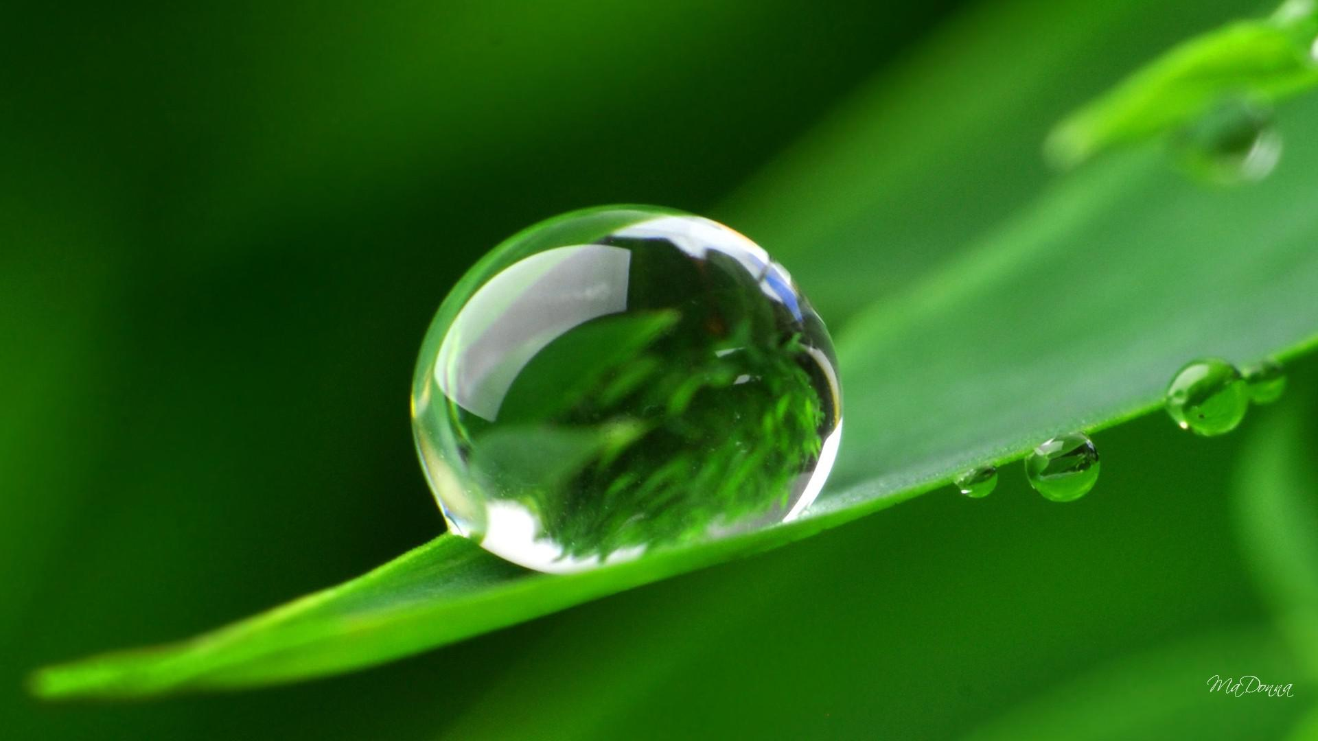 природа вода капля nature water drop  № 2047548 без смс