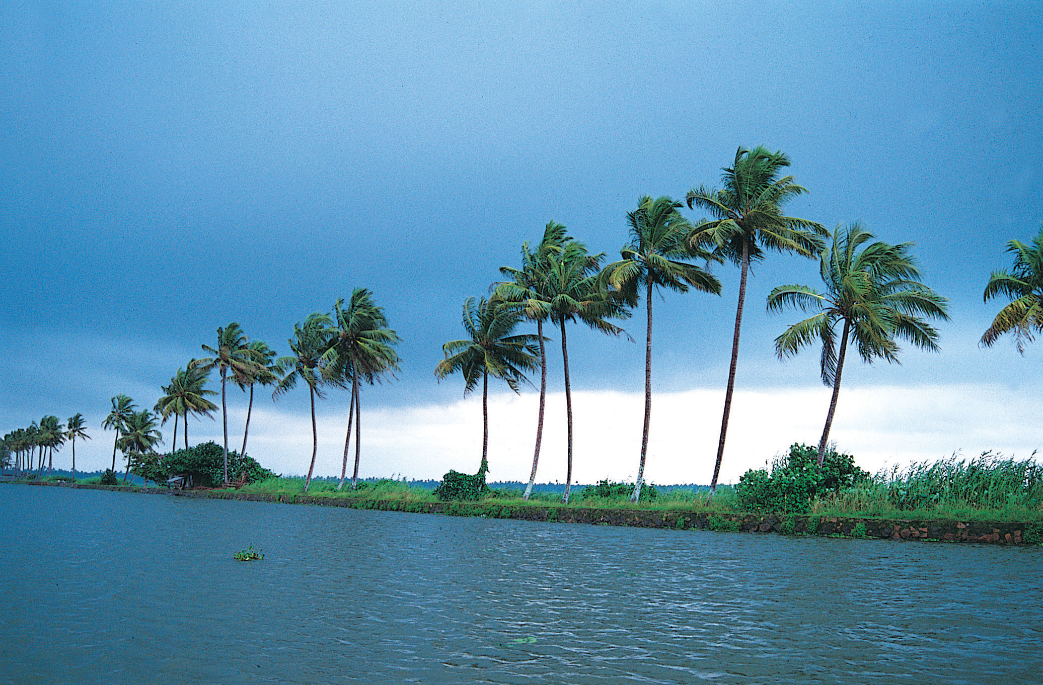 Kerala HD wallpapers   HD widescreen wallpapers High Definition 2072x1362