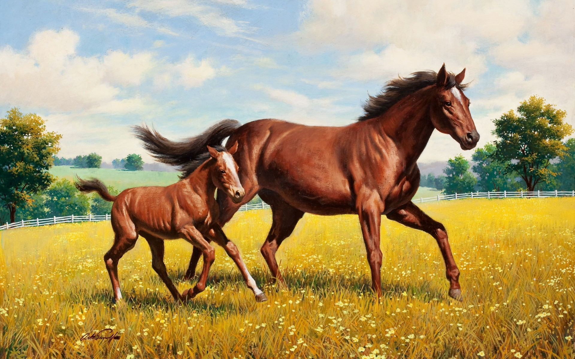 Beautiful Horses Going Field wallpapers Beautiful Horses Going Field 1920x1200