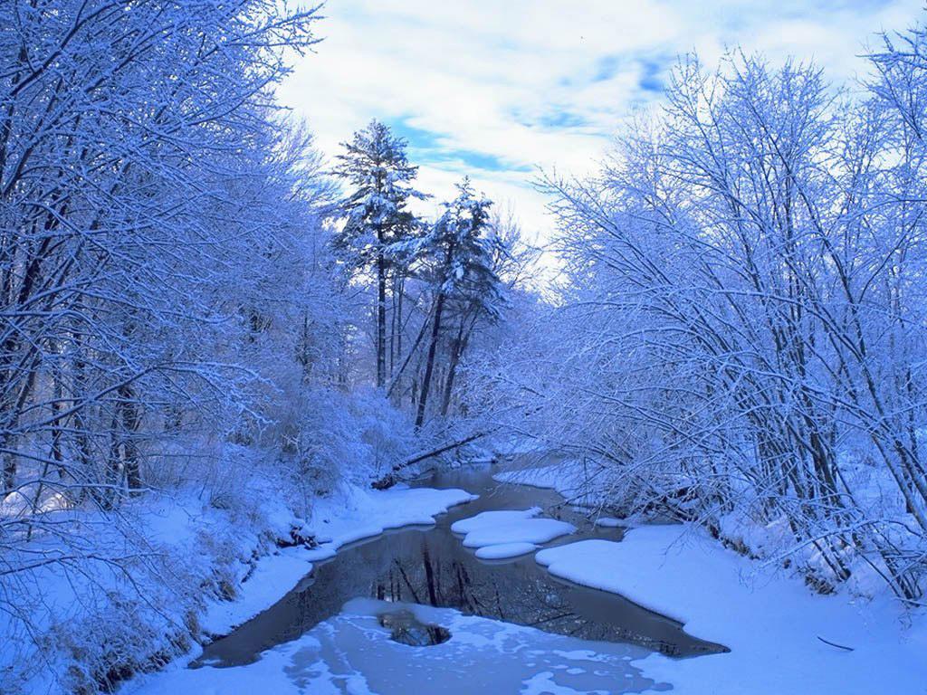 Gallery For gt Christmas Winter Scenes Wallpaper 1024x768