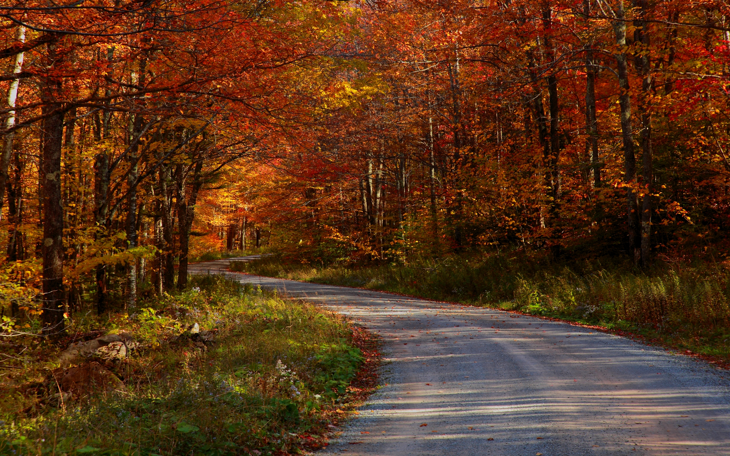 Autumn Wallpaper   COUNTRY ROADSTAKE ME HOME Wallpapers   HD 2560x1600