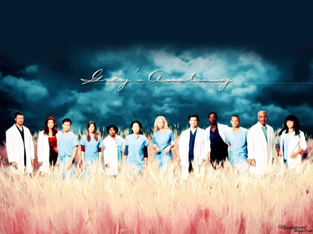Greys Anatomy Promo Picture Wallpaper TV Fanart Wallpapers Icons 1024x768