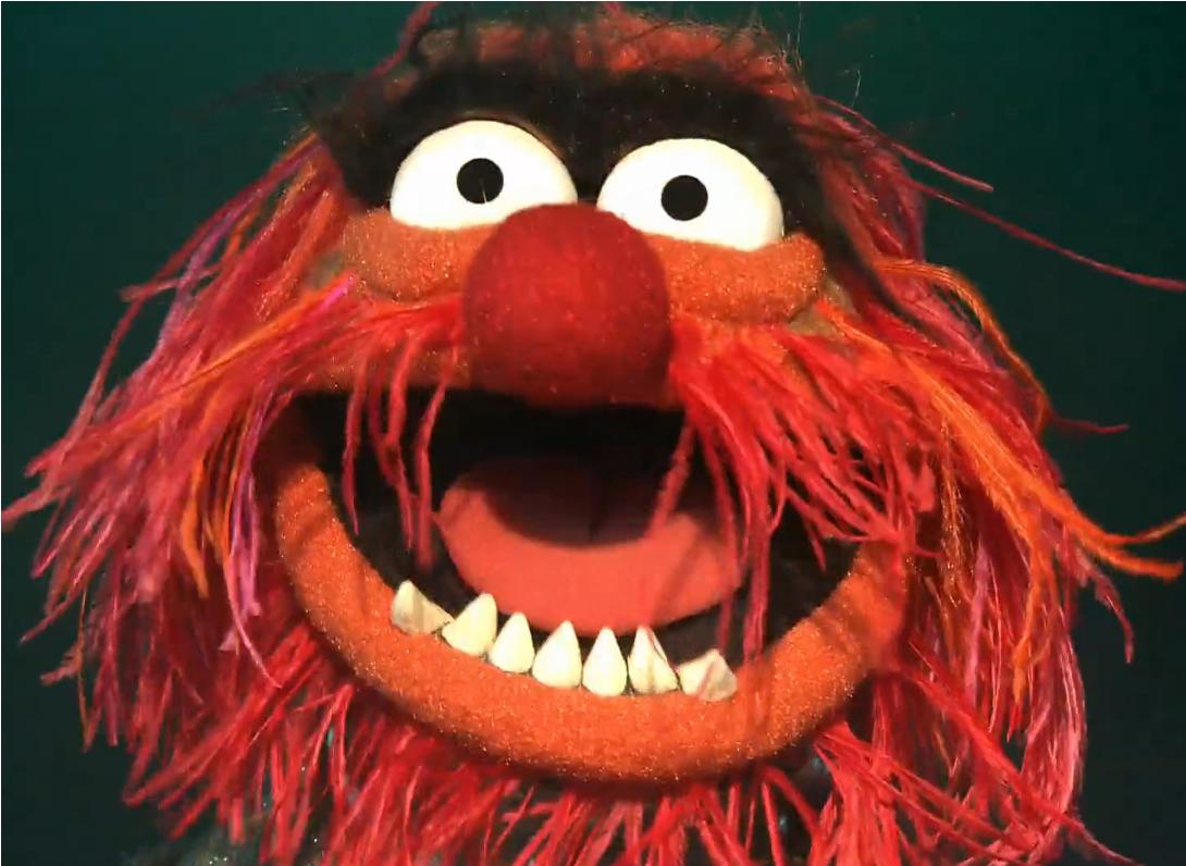 animal muppet wallpaper - photo #13
